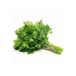 Persil plat bouquet