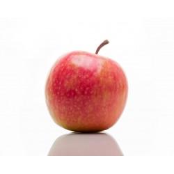 Epuisé - Pomme Cripps Pink
