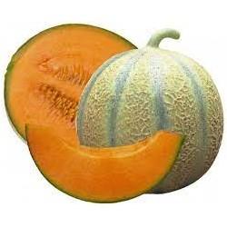 Melon (Espagne) - la pièce